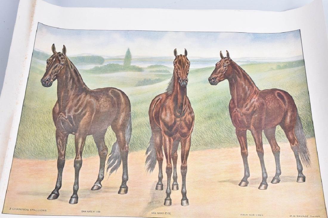1940'S FAMOUS RACE HORSE PRINT, DAN PATCH & MORE - 2