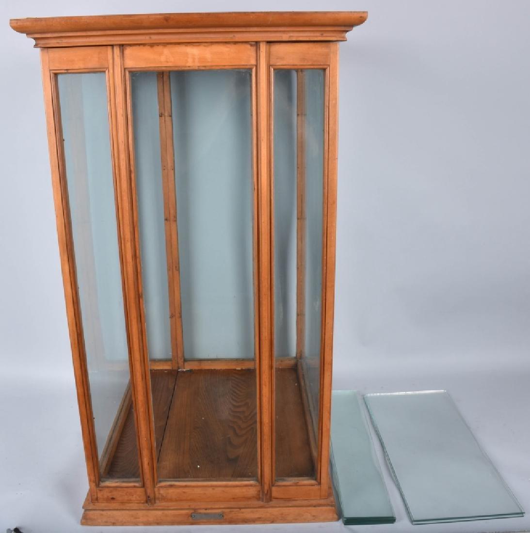 PAT. 1895 EXHIBITION OAK SHOW CASE