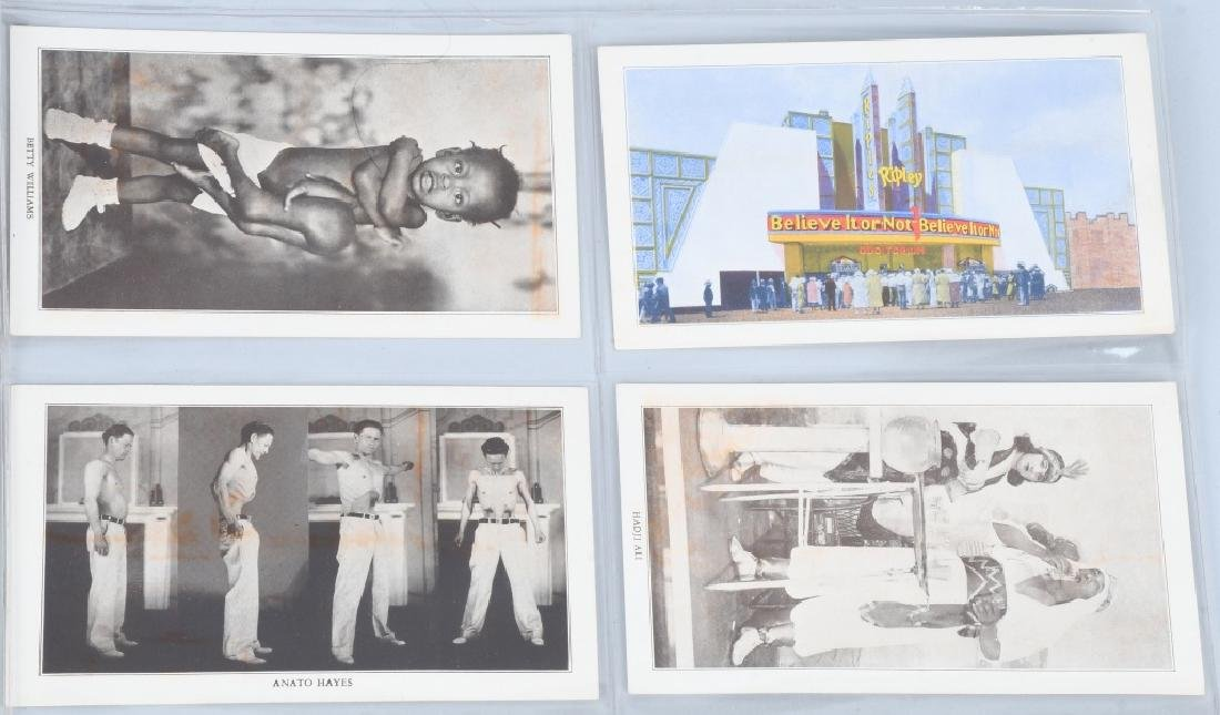RIPLEYS PHOTO POSTCARDS & WORLDS FAIR EPHEMERA - 4