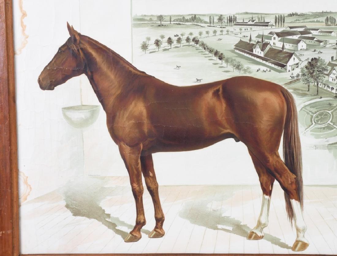 SIMMOCOLON STOCK HORSE FARM LITHO - 2