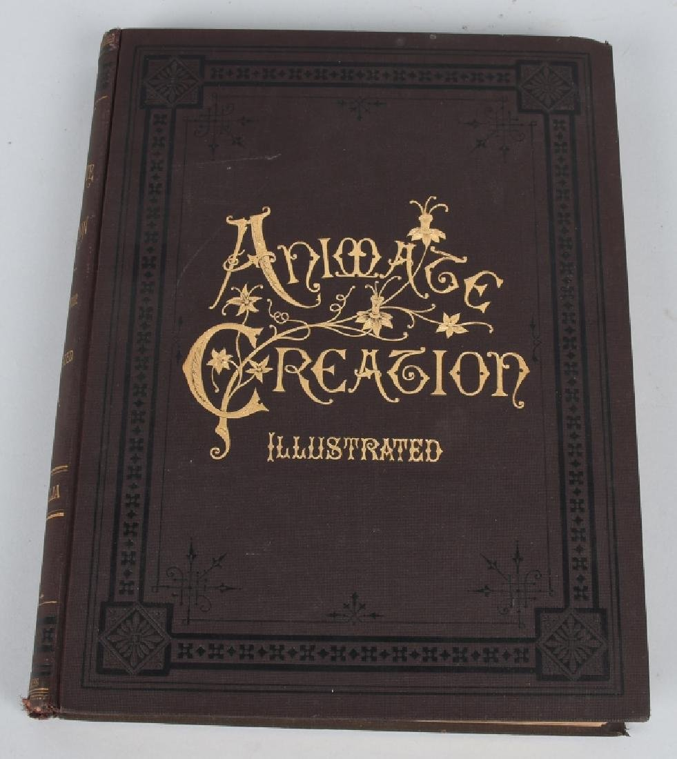 1885 ANIMATE CREATION By REV JG WOOD ZOOLOGY