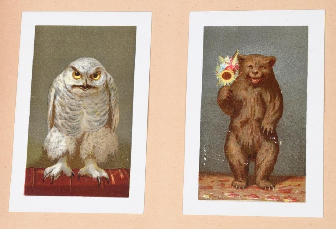 19th CENT. SALESMAN SAMPLE CARD PORTFOLIO - 6
