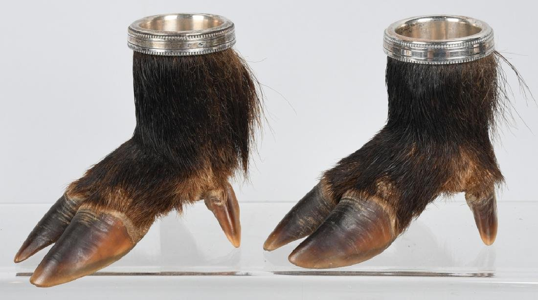 BOAR'S FEET TAXIDERMY, CUPS