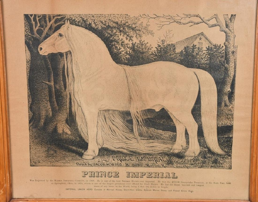 19th CENT. PRINCE IMPERIAL HORSE PRINT & MORE - 2