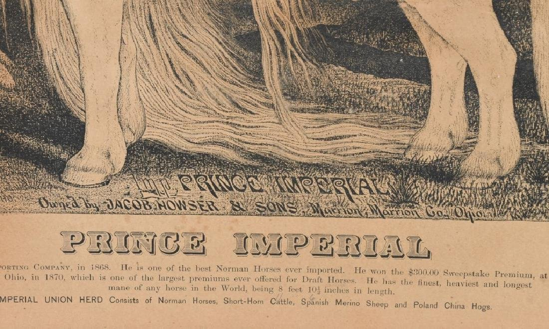 19th CENT. PRINCE IMPERIAL HORSE PRINT & MORE - 3