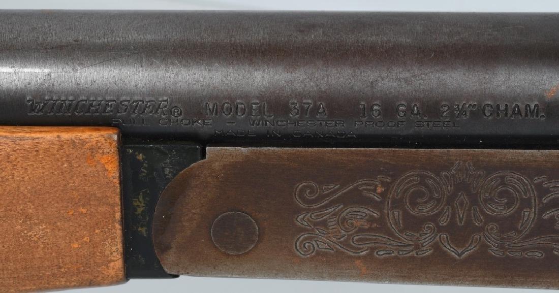 WINCHESTER MODEL 37A, SINGLE SHOT 16 GA. SHOTGUN - 9