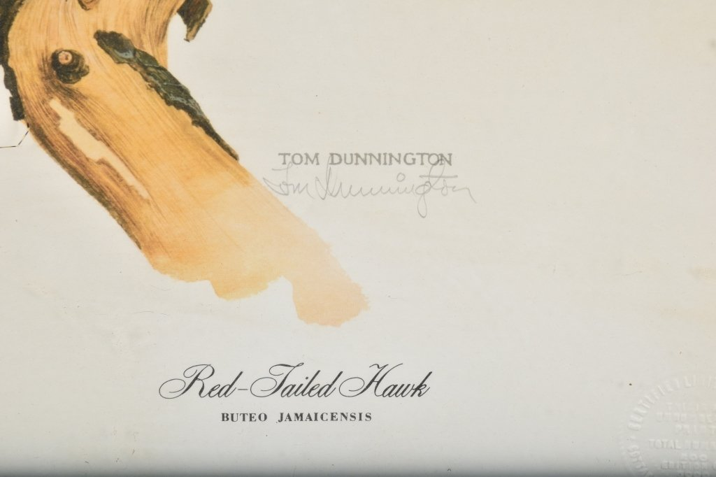 TOM DUNNINGTON SIGNED RED TAILED HAWK PRINT - 3
