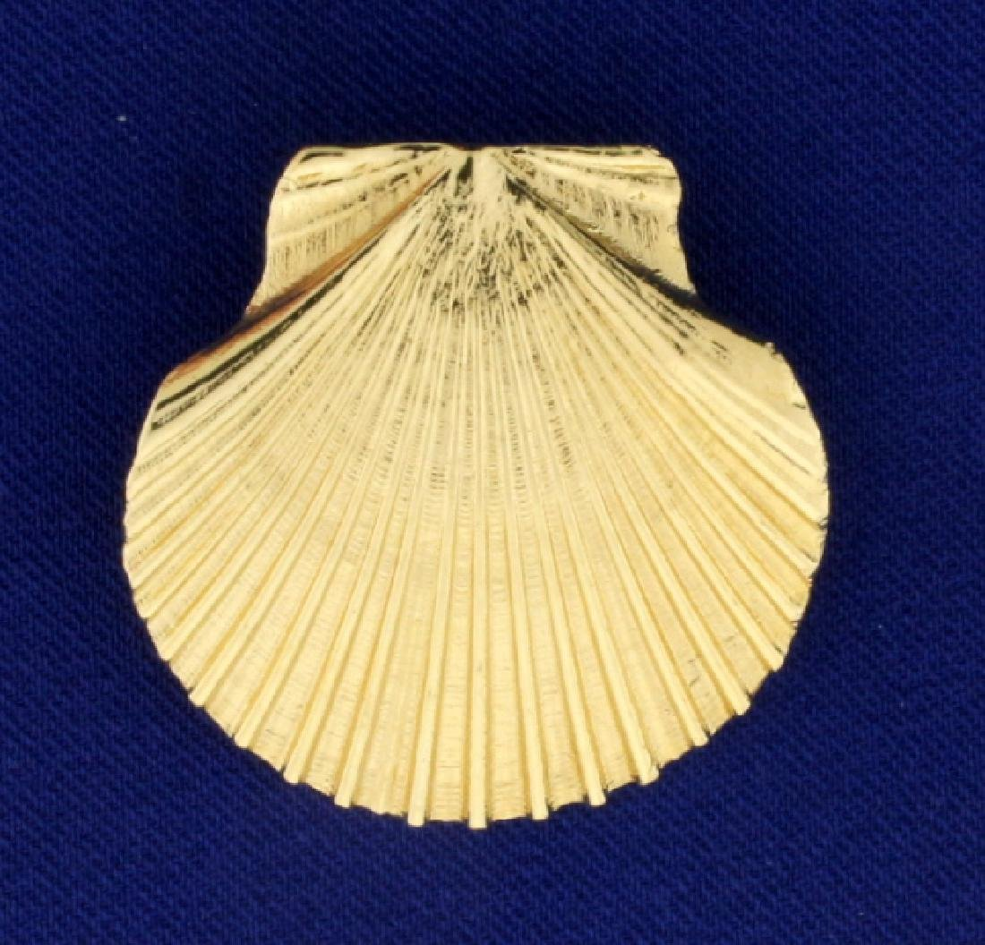 Large Scallop Shell Pendant or Slide