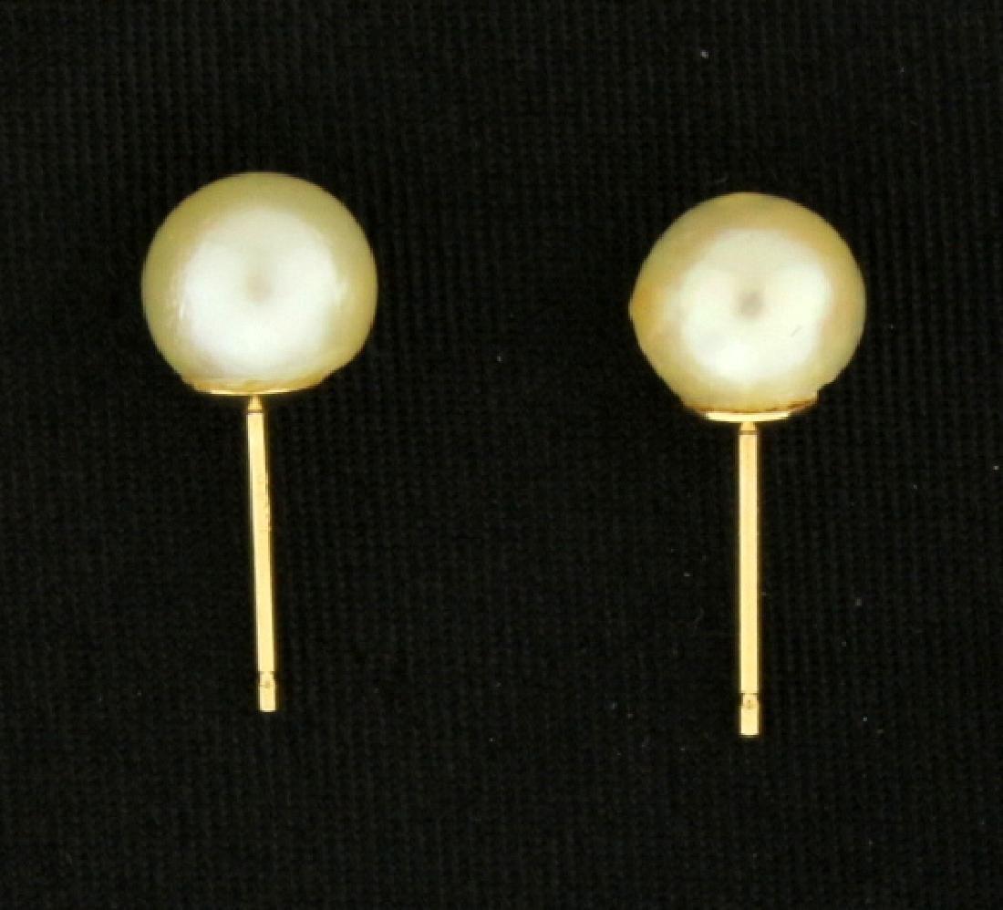 Pearl Stud Earrings - 2