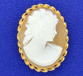 Fantastic Carved Cameo Pendant / Pin Combination