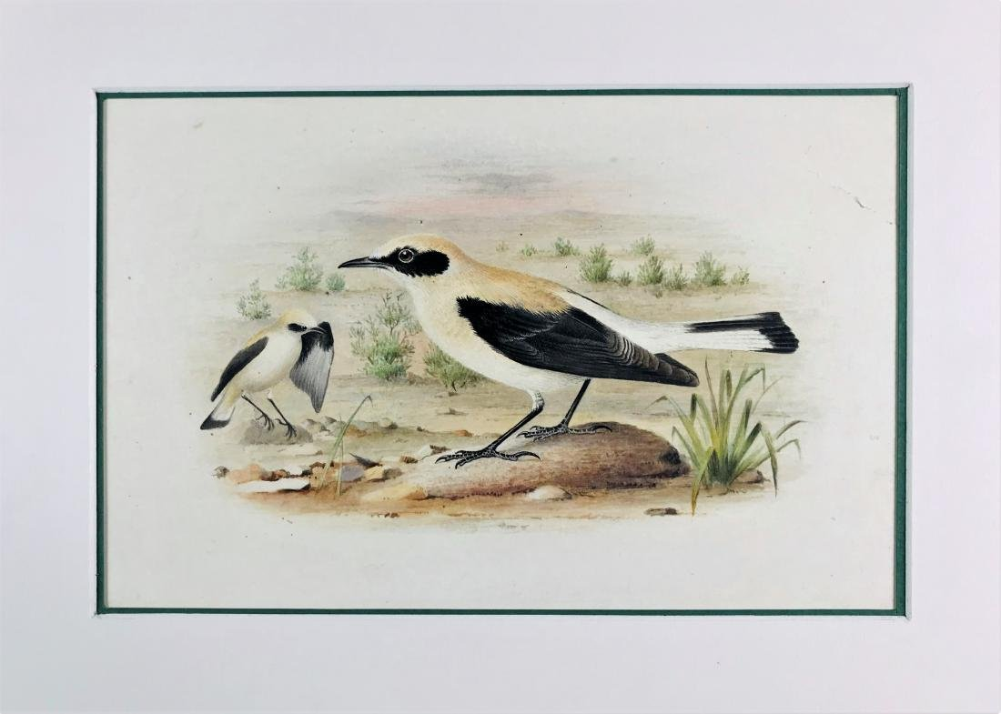GRONVOLD.  lot of 4 watercolors.