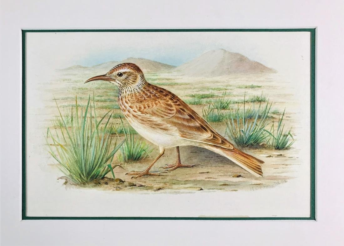 GRONVOLD.  lot of 4 watercolors. - 2