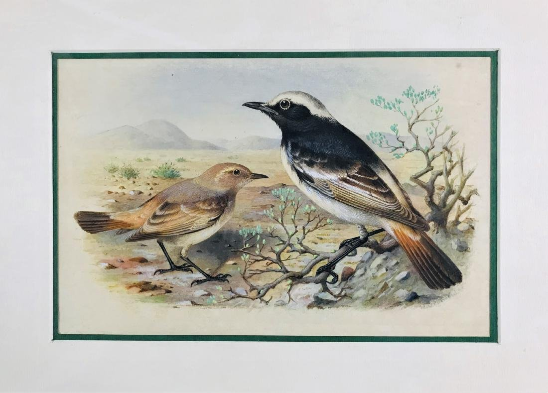 GRONVOLD.  lot of 3 watercolors. - 3