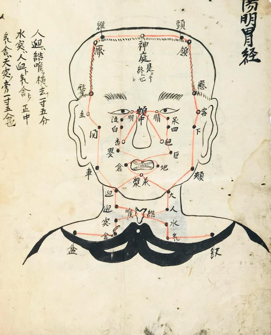Acupuncture Manuscript. Jushi kei zu. Disegno dei 14