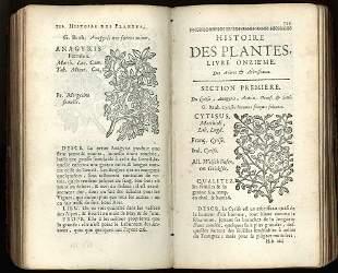 Botany. DE VILLE. Histoire des Plantes de l'Europe