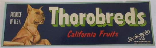 "Thorobreds Grape Crate Label - Boxer Dog. 13"". c.1950s"