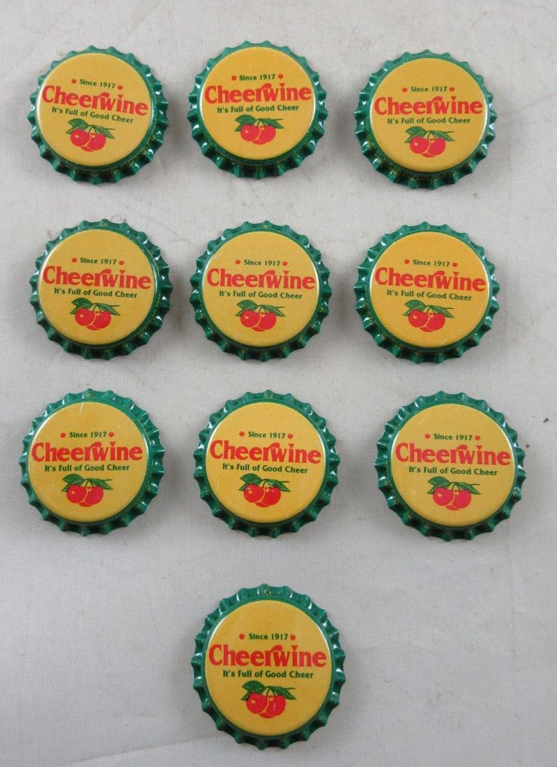 Lot of 10 Very Colorful Cheerwine Plastic Lined Soda