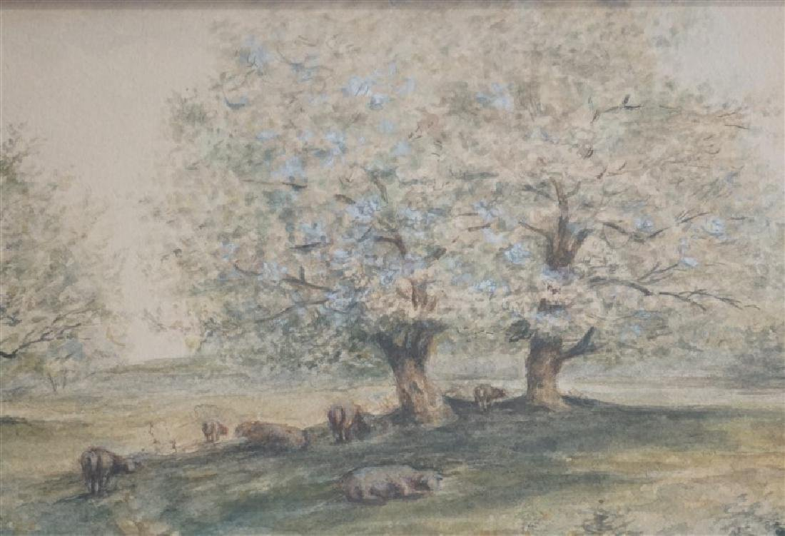 ORIGINAL WATERCOLOR SHEEP IN ORCHARD - 4
