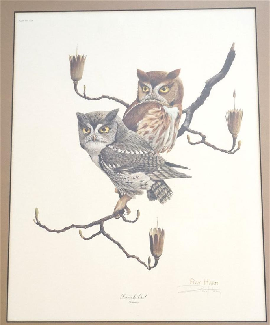RAY HARM SCREECH OWL SIGNED LITHO - 2