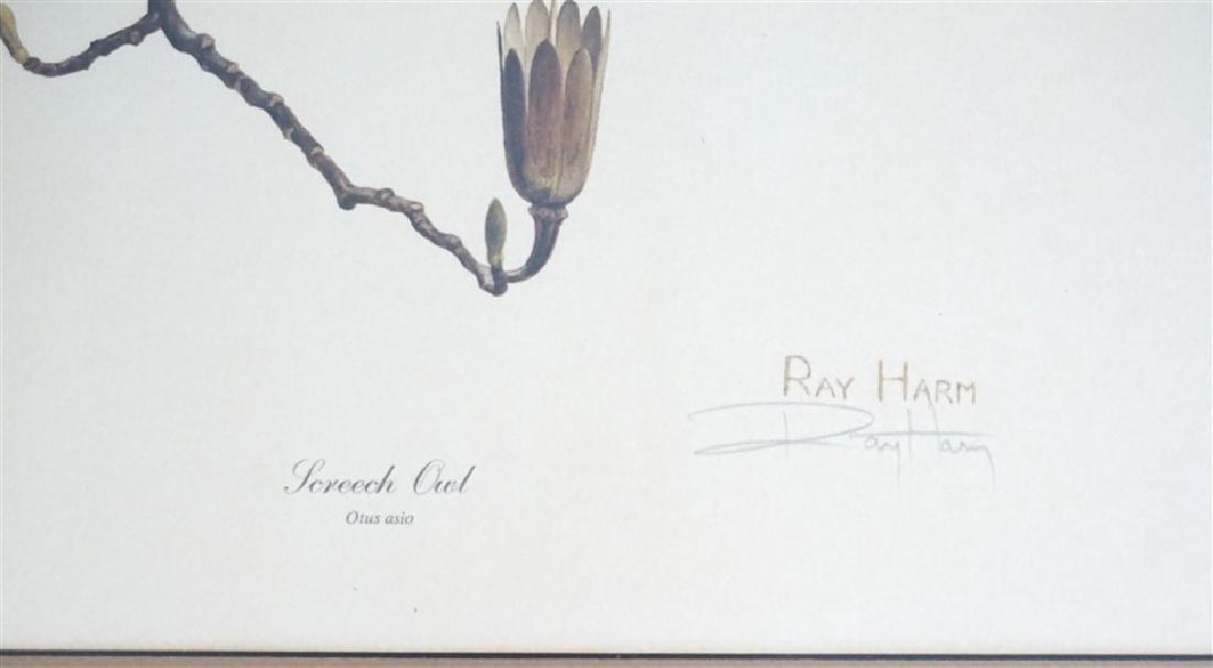 RAY HARM SCREECH OWL SIGNED LITHO - 3
