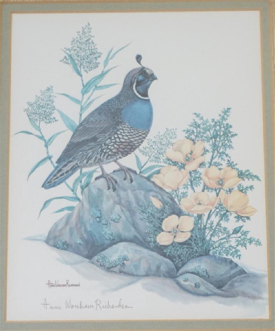 ANNE WORSHAM RICHARDSON CALIF QUAIL - 2