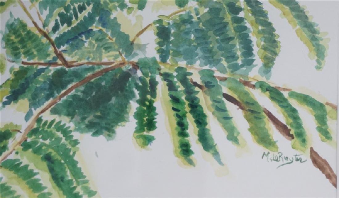 MIMOSA TREE WATERCOLOR M CONNELL-DE-RUTER - 5