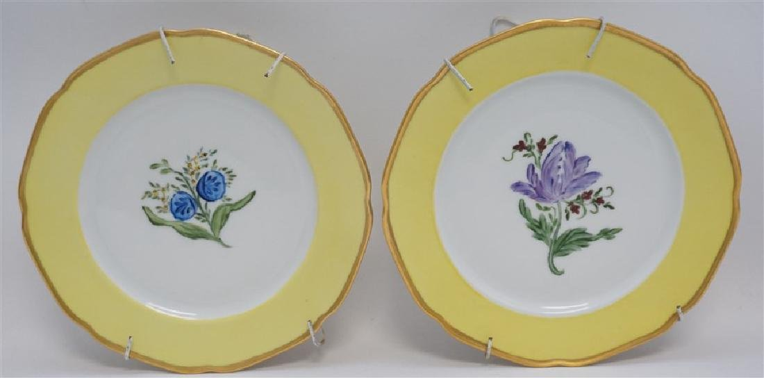 PAIR TIRSCHENREUTH HAND PAINTED FLORAL PLATES