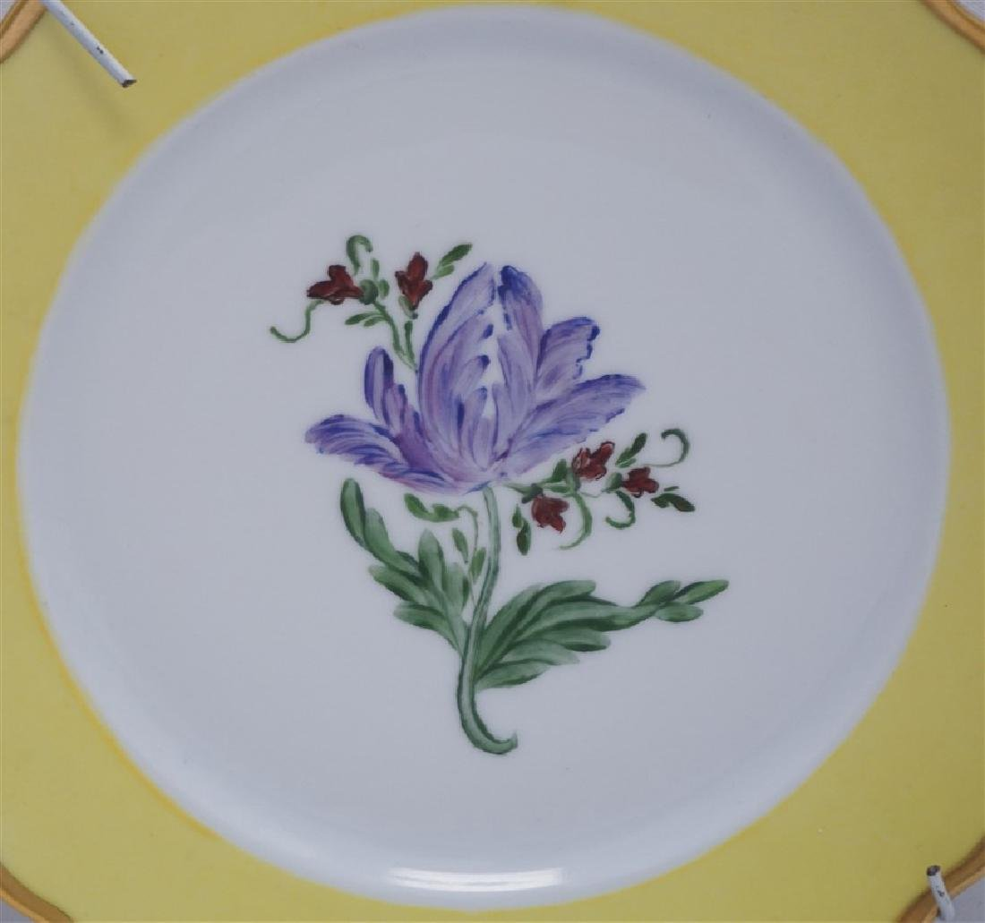 PAIR TIRSCHENREUTH HAND PAINTED FLORAL PLATES - 3