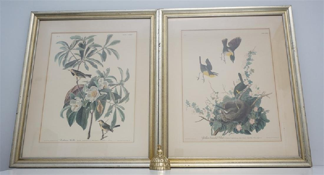 PAIR VINTAGE AUDUBON REPRINT YELLOW BREASTED CHAT - 8