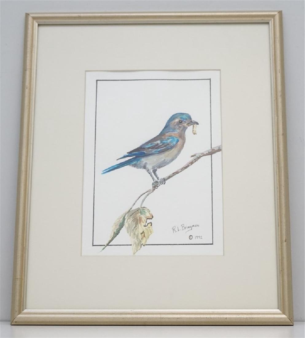 ORIGINAL BLUEBIRD WATERCOLOR - BRINGMAN