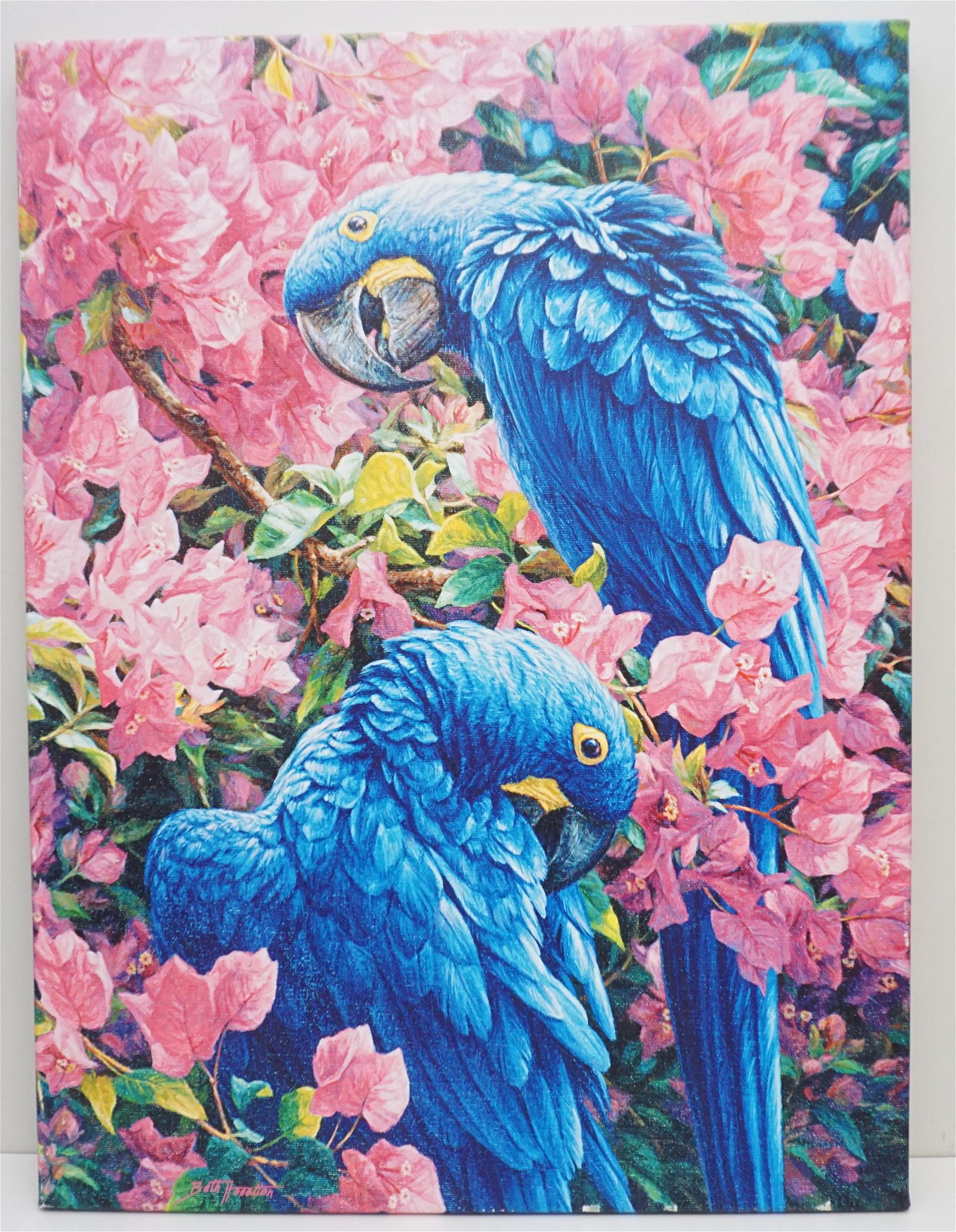 GALLERY WRAPPED CANVAS GICLEE MACAWS