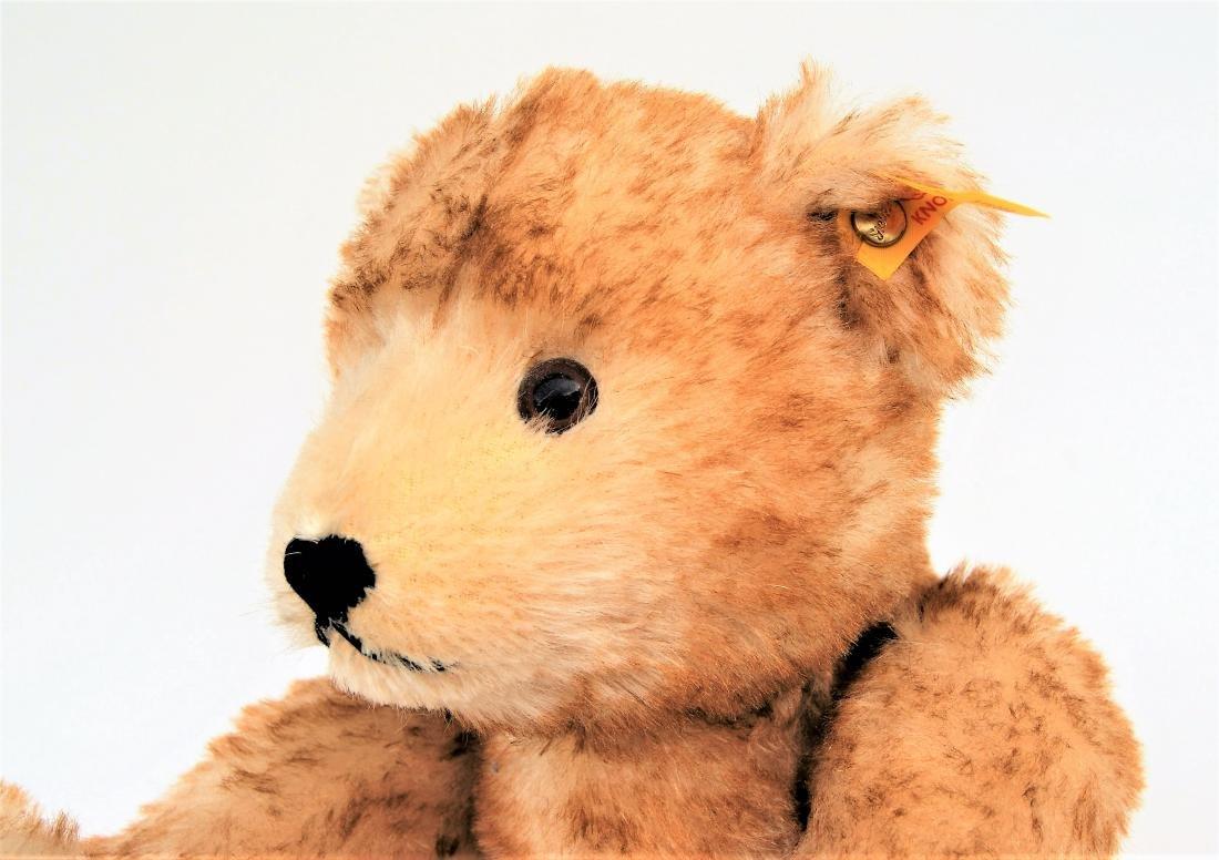 Steiff Classic 1928 Petsy Teddy Bear 000966 - 3