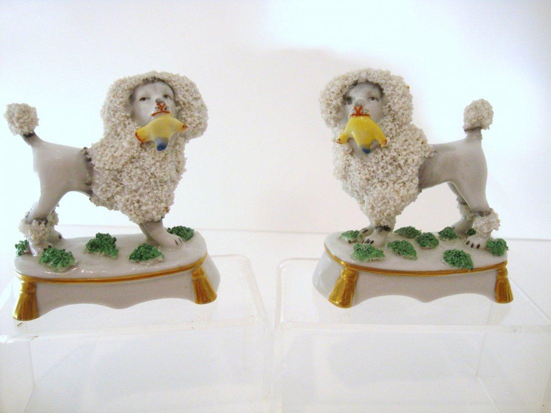 14: Miniature Chelsea Poodles
