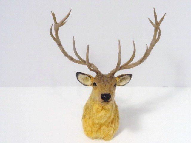 Elizabeth Mcinnis Mounted Elk Head
