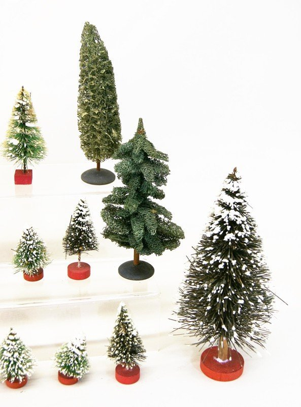 Large Group Christmas Trees - 3