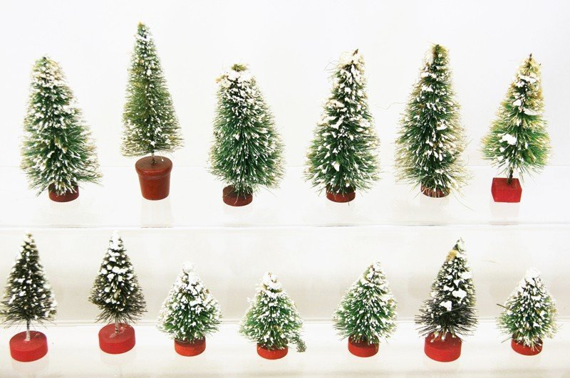 Large Group Christmas Trees - 5
