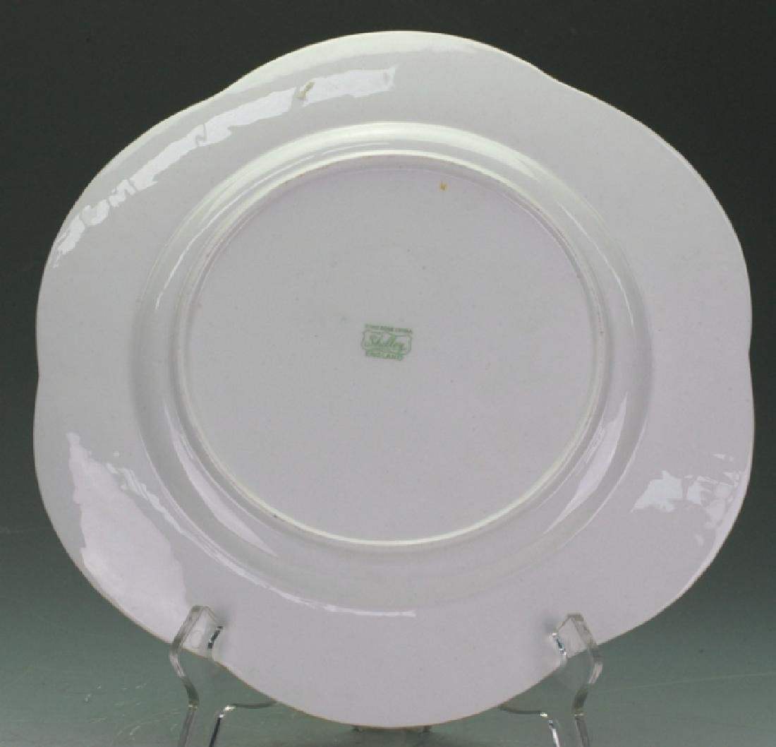 Shelly Plate - 2