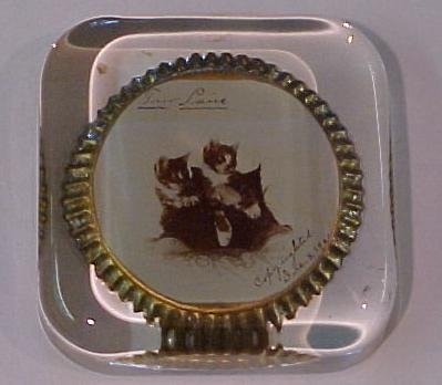 15: 3 Paperweights with cat photos