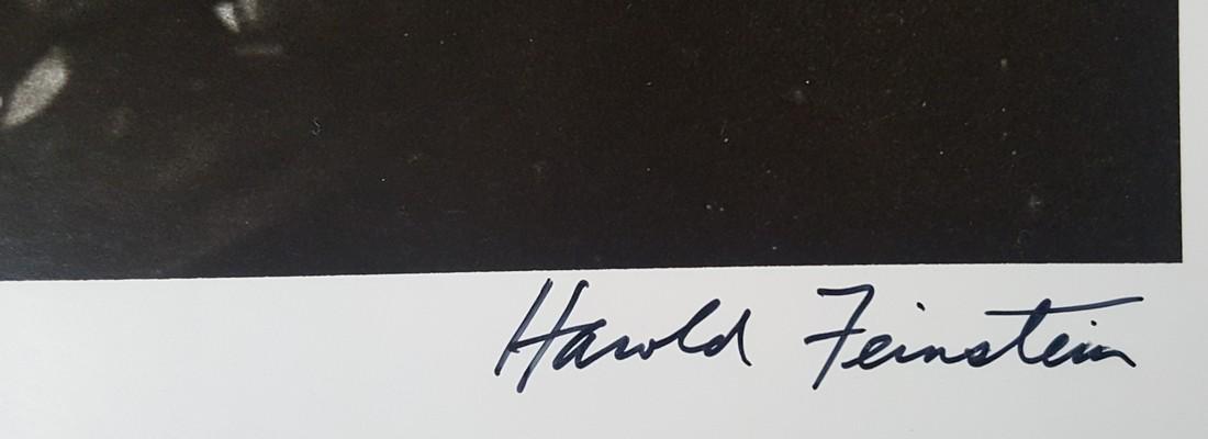Harold Feinstein Vintage Signed Photograph 1948 - 4