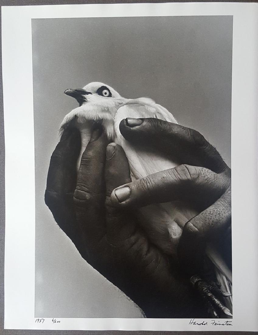 Harold Feinstein Vintage Signed Photograph 1955