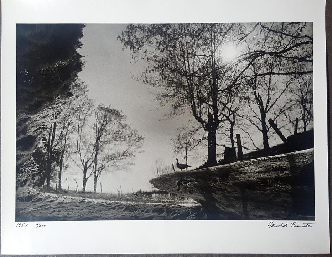 Harold Feinstein Vintage Signed Photograph 1957