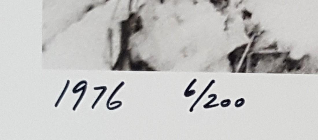 Harold Feinstein Vintage Signed Photograph 1974 - 3
