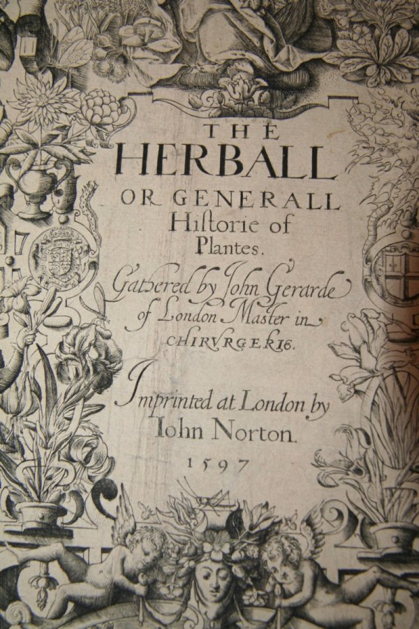 5: The Herball by John Gerarde 1597