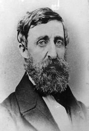 1: Two Pencils made by Henry David Thoreau - 6