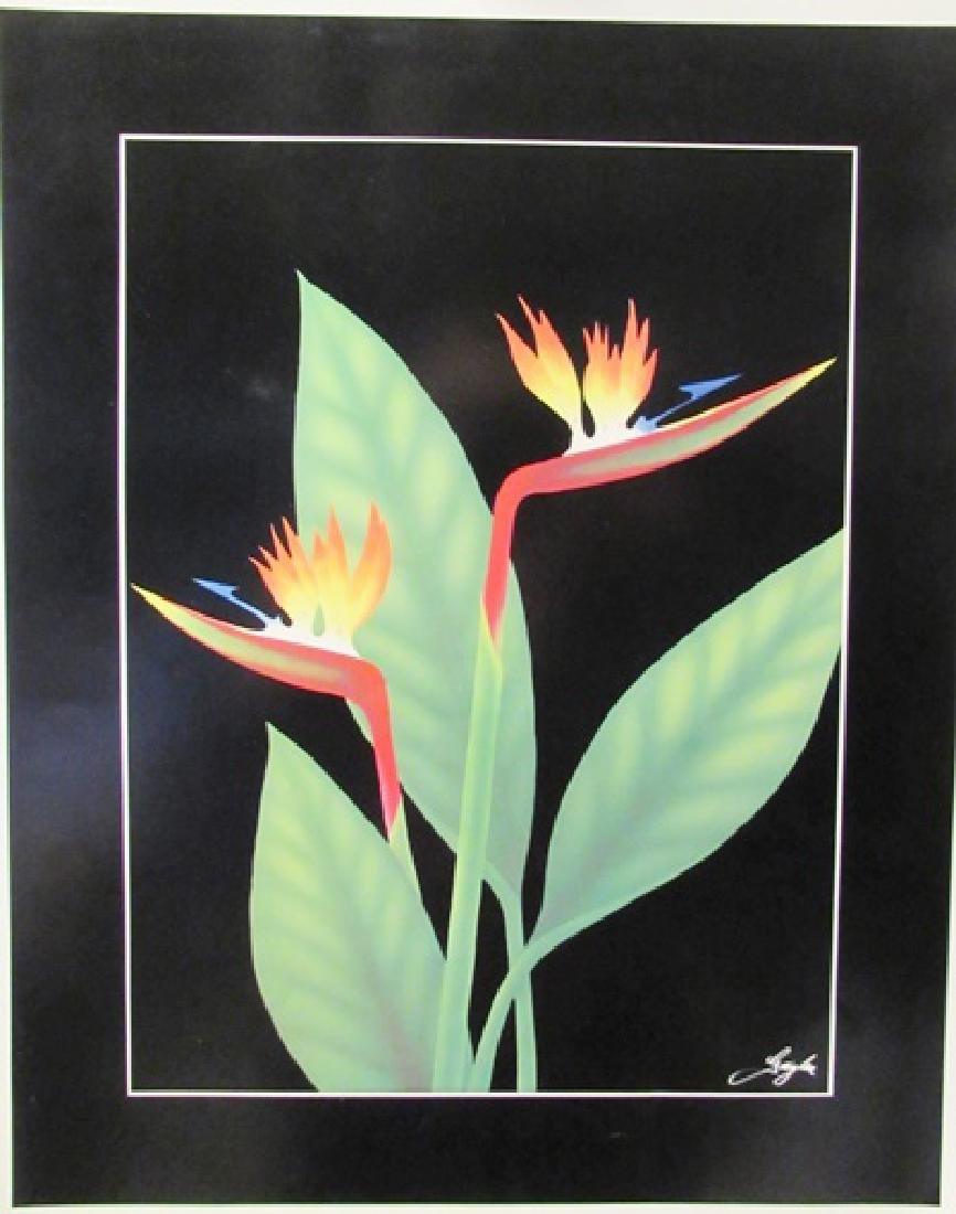 Bird of Paradise - Gaylen - Lithograph
