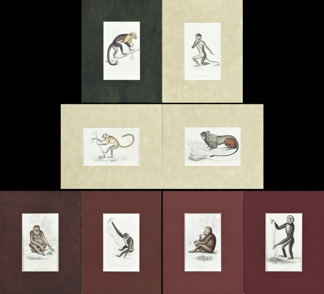 William Home Lizars (1788-1859), Group of Eight
