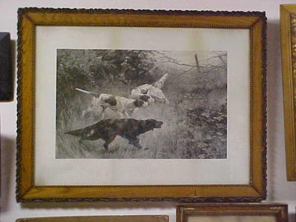 216: 1892 oak framed print  hunting dogs