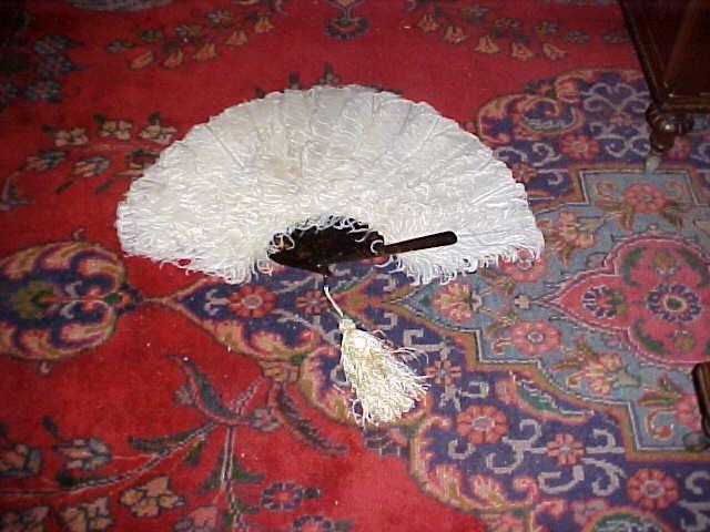 19: Early feather fan w/tortorise shell arms.