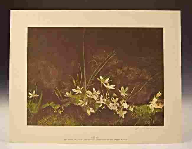 Andrew Wyeth Signed