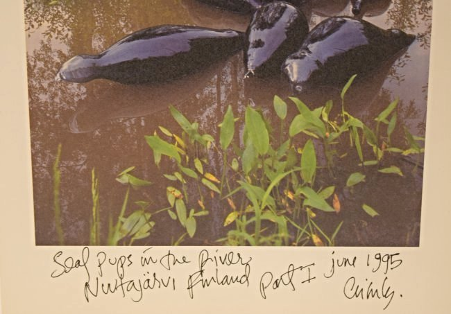 Dale Chihuly Signed Print - 2
